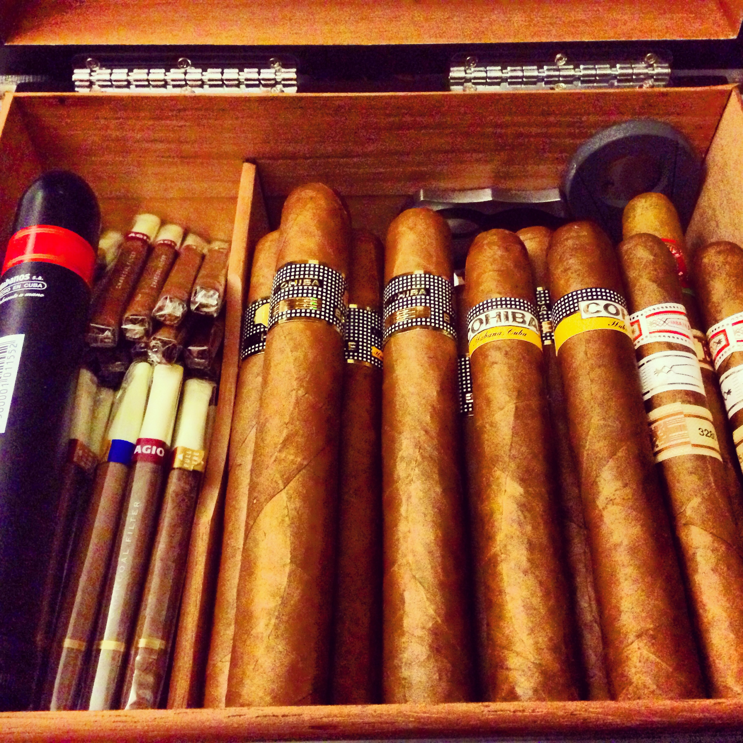 mvHumidor01